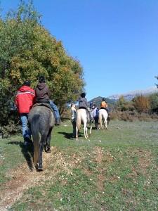Traditional accommodation in Saxonis Houses Guesthouse - Hotel in Megalo papigo, Zagorohoria, Epirus, Ioannina | Horseriding