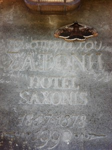 Traditional accommodation in Saxonis Houses Guesthouse - Hotel in Megalo papigo, Zagorohoria, Epirus, Ioannina